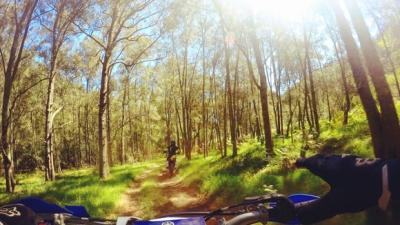 バイクで山道走ってたら友達かよって距離でついてくるバイク