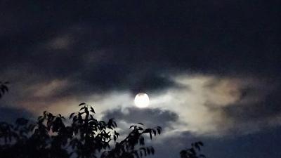 雲の隙間にお月様^^